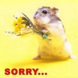 sorry_300.jpg
