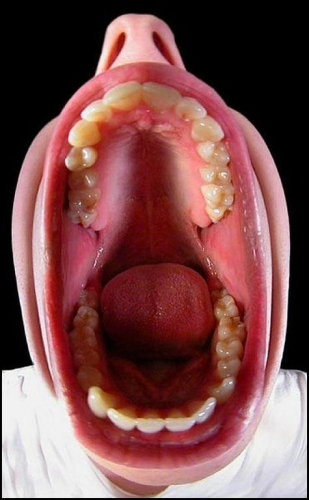 big-mouth.jpg