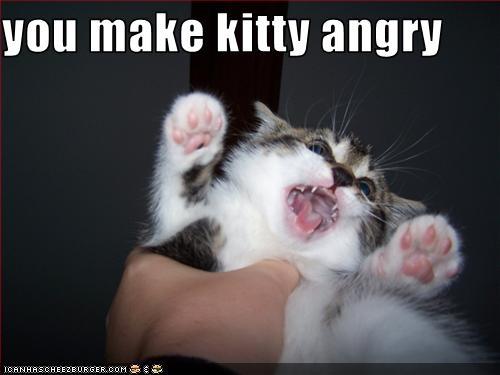 angry-kitty.jpg